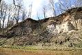 2016 05 Amulas doloita atsegui pie Kalna muizas (2).jpg