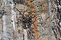 2016 Prowincja Krabi, Ko Ma (02).jpg
