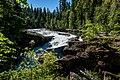 2017-06-24 Stamp River PP (36609106476).jpg