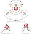 209 Polar Covalent Bonds in a Water Molecule.jpg