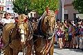 27.8.16 Strakonice MDF Sunday Parade 017 (29230052471).jpg
