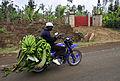 2DU Kenya 77 (5366744021).jpg
