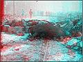 3D IMG 0483-San Francisco Earthquake (6159788497).jpg