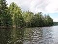 48 Shoreline of Lake Opeongo.jpg
