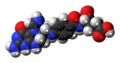 5-Formiminotetrahydrofolate-3D-spacefill.png