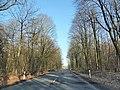 59192 Bergkamen, Germany - panoramio (20).jpg