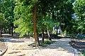 71-212-5017 Zvenyhorodka Children park SAM 2516.jpg