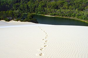 Great Sandy National Park - Lake Wabby
