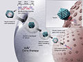 AAV Gene Therapy.jpg