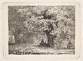 A Man Sitting under a Tree in Bloom MET DP824261.jpg