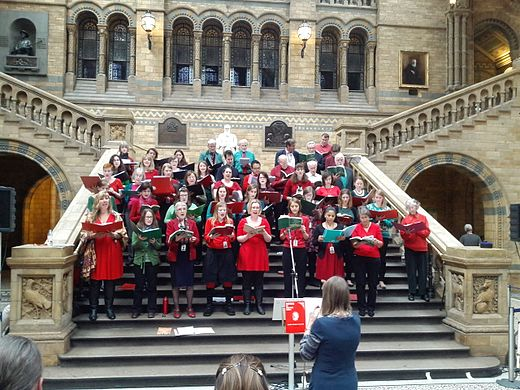 A choir singing from Carols for Choirs in the Natural History Museum, London A choir of Natural History Museum, Science Museum and Victoria and Albert Museum staff members sing carols in the central hall of the Natural History Museum 02.jpg
