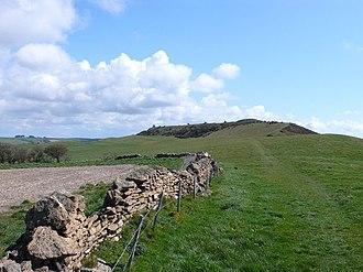 Abbotsbury Castle - Abbotsbury Castle seen from Tulks Hill
