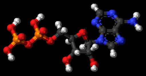 Adenosine-diphosphate-3D-balls