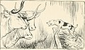 Aesop's fables (1912) (14782496272).jpg