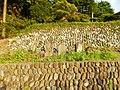 Akagimachi Miyada, Shibukawa, Gunma Prefecture 379-1121, Japan - panoramio (8).jpg