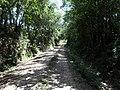 Alameda Cândido Brasil Moro - Palma - Santa Maria, foto 12 (sentido S-N).jpg - panoramio.jpg