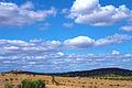 Alentejo Landscape.JPG