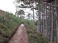 Allt Ruadh path - geograph.org.uk - 318442.jpg