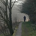 Along the Cromford Canal - geograph.org.uk - 1210130.jpg