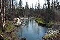 Alpha pool at Liard River Hotsprings, British Columbia.JPG