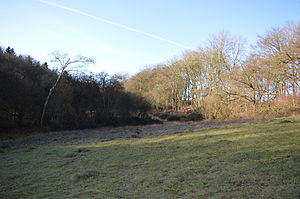 Herts and Middlesex Wildlife Trust