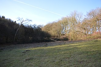 Herts and Middlesex Wildlife Trust - Image: Alpine Meadow, Berkhamsted 3