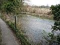 Alresford - Stream - geograph.org.uk - 1616015.jpg