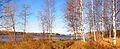 Alvajärvi shore2.jpg