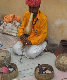 Indian musical instruments - Wikipedia