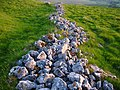 Ancient walls - geograph.org.uk - 188152.jpg