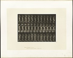 Animal locomotion. Plate 123 (Boston Public Library).jpg