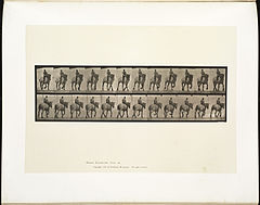 Animal locomotion. Plate 599 (Boston Public Library).jpg