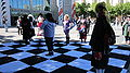 Anime checkers at FanimeCon 2010-05-30 4.JPG