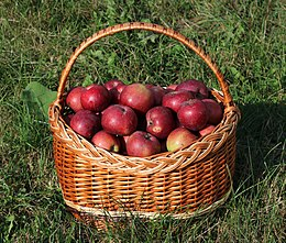 List of culinary fruits - Wikipedia