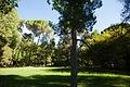 Aranjuez PM 090736 E.jpg