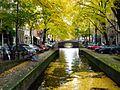 ArianitAmsterdam18.jpg