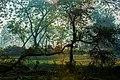 Arunima Eco Park.jpg