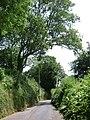 Ashcombe Road approaches Dawlish - geograph.org.uk - 1382438.jpg