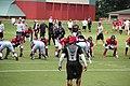 Atlanta Falcons training camp July 2016 IMG 7875.jpg