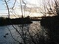 Attenborough Nature Reserve Barton Bridge - geograph.org.uk - 1126912.jpg