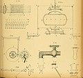 Atti della Accademia di scienze, lettere e arti di Palermo. (1895) (14578664448).jpg