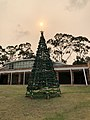 Australian Christmas (49197246052).jpg