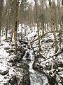 Bachlauf am Feldberg 6784 (6911554620).jpg