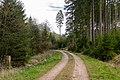 Bad Wünnenberg - 2019-04-25 - PB-060 Leiberger Wald (05).jpg
