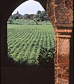 Bagan, Myanmar 2006. Photo- Lorraine Hitch, AusAID (10676567905).jpg