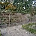Bakstenen fruitmuur met latwerk en leifruit - Geldrop - 20405162 - RCE.jpg