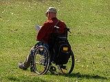 Bamberg Hain Rollstuhl-20190401-RM-141430.jpg