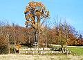 Bartne, cmentarz wojenny nr 64 (HB2).jpg