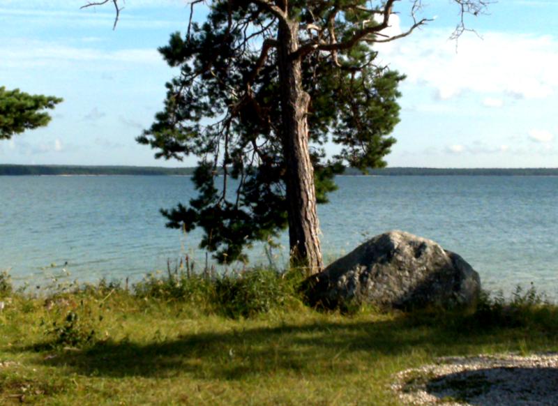 File:Bastetrask-Gotland-2010-08-06-16-43.png