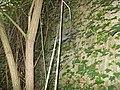 Batteria Fresonara DCI-SP119 WCA-I12930 - panoramio.jpg